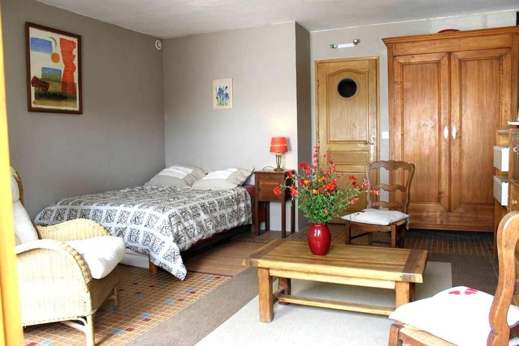 Chambre d'hôte avec SDB et WC privé - Azay-le-Rideau - Bed & Breakfast