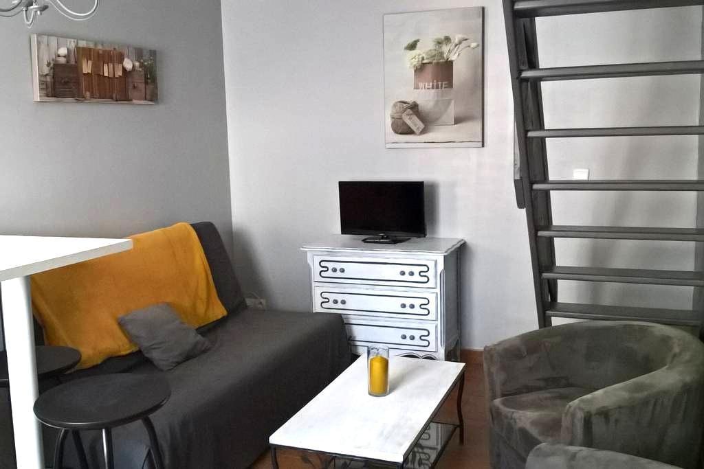 duplex équipé et indépendant a 10 mn du circuit - Brette-les-Pins - Appartement