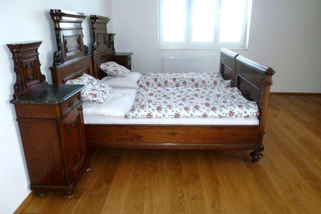 Large rooms in luxury house - Praga - Casa