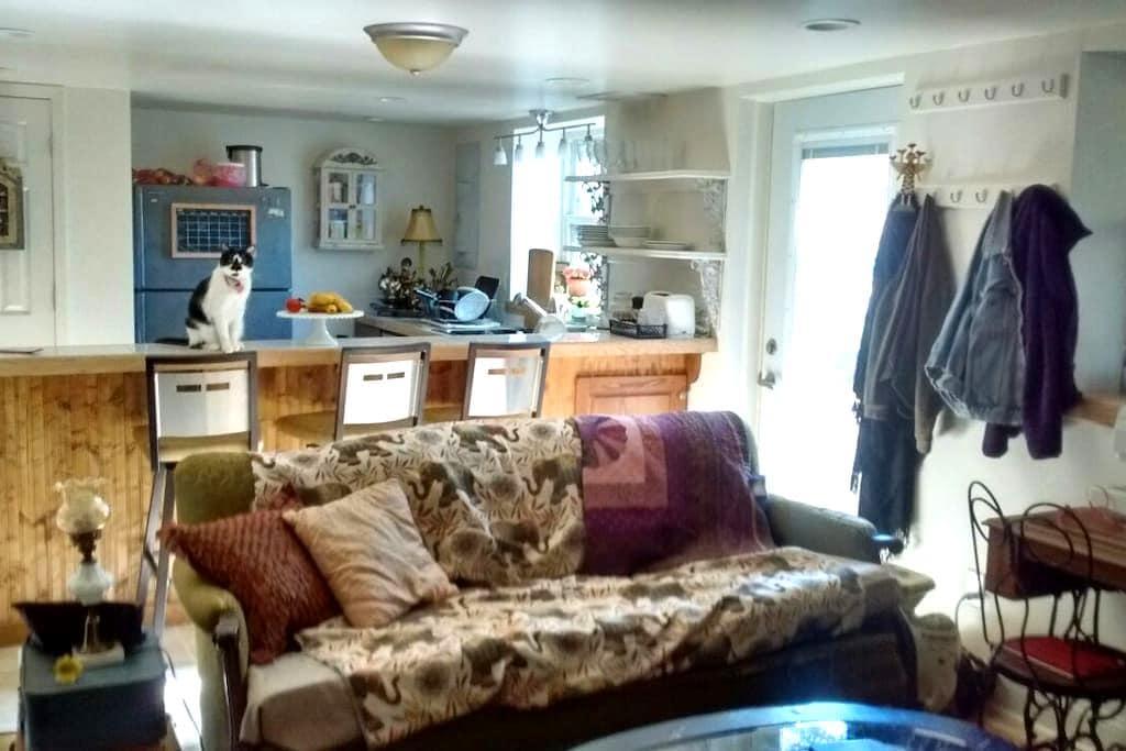 Private apartment 2mi from downtown - Columbia - Departamento