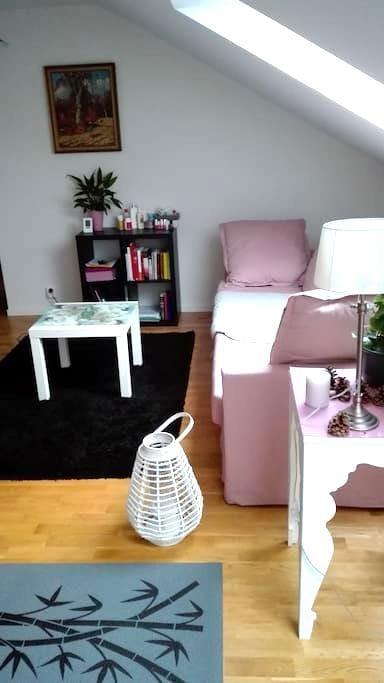 Charming and modern under roof flat in Trelleborg - Trelleborg - Leilighet