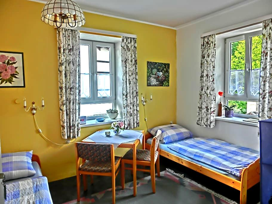 friendly room with space for two - Starnberg - Квартира