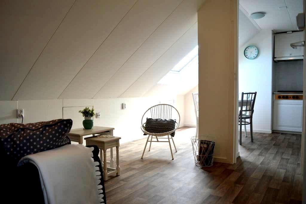 Appartement op loopafstand van strand/bos/centrum - De Koog - Apartemen