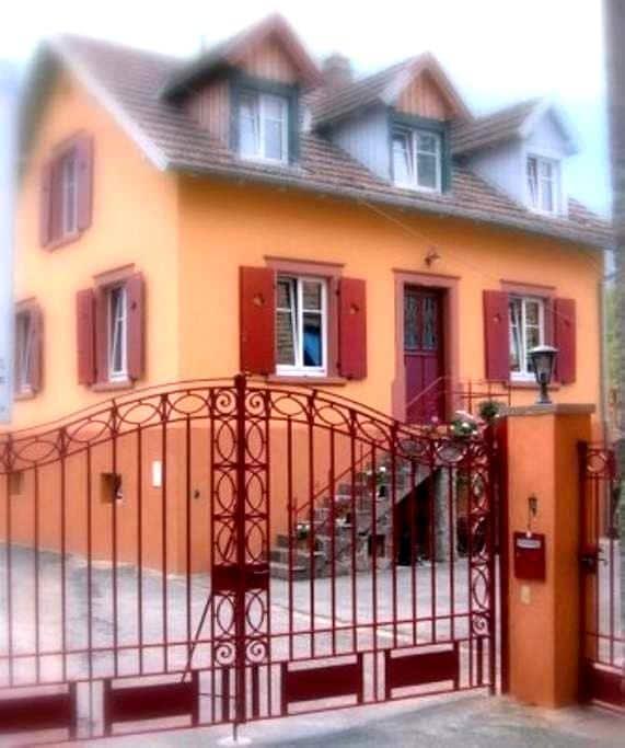 Au Relais Campagnard - Sélestat - Rumah