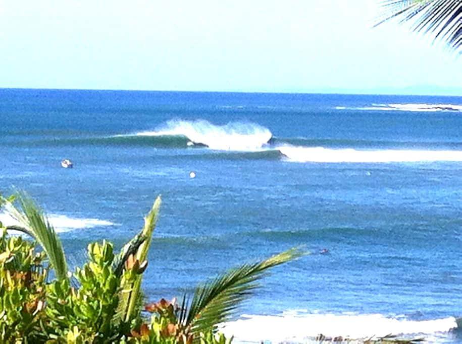 Surfers Heaven dorm - Santa Catalina - Bed & Breakfast