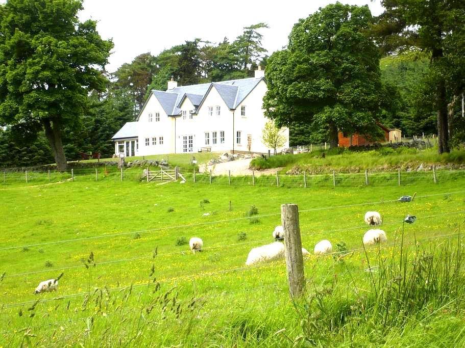Relax in a tranquil Scottish glen - Kirriemuir - Bed & Breakfast