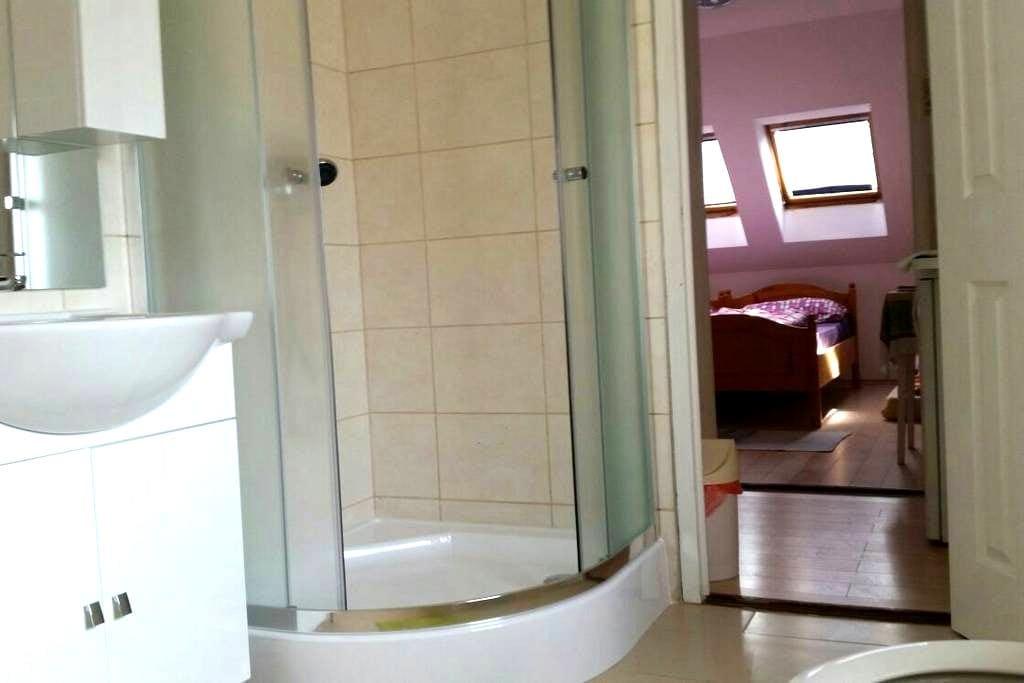Li-Do Vendégház 1 szobás apartman - Balatonfüred - Daire