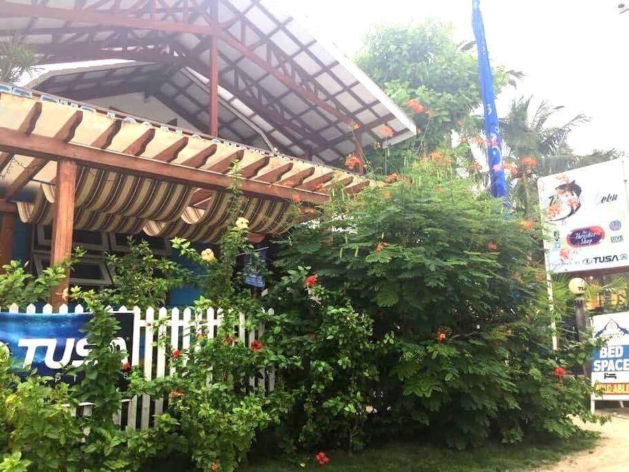 Comfy B&B in Green Room @Diveshop - Daanbantayan - Dorm