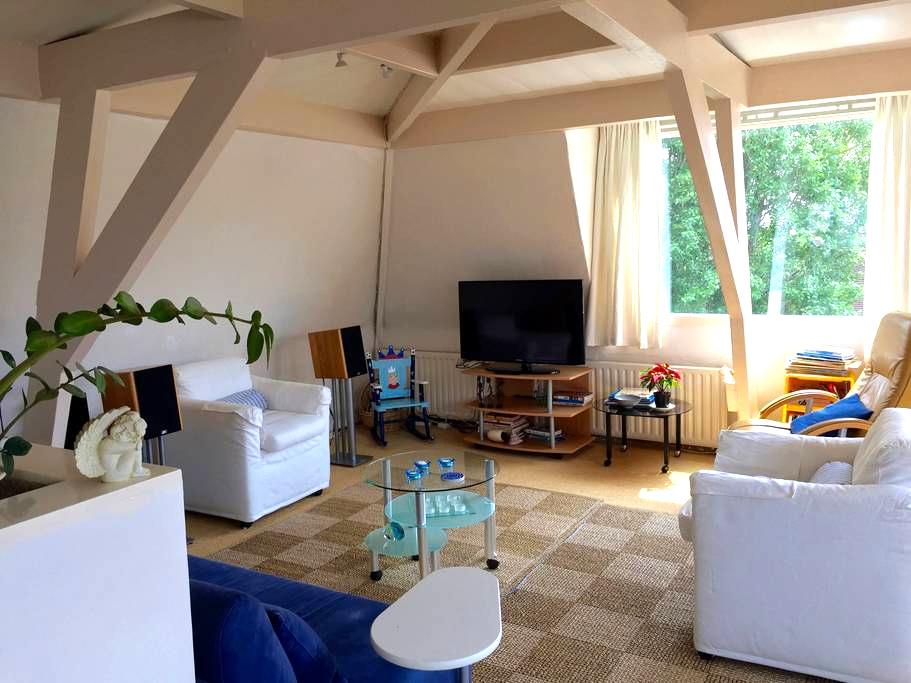 City Penthouse near the Central Train station. - Bois-le-Duc - Appartement