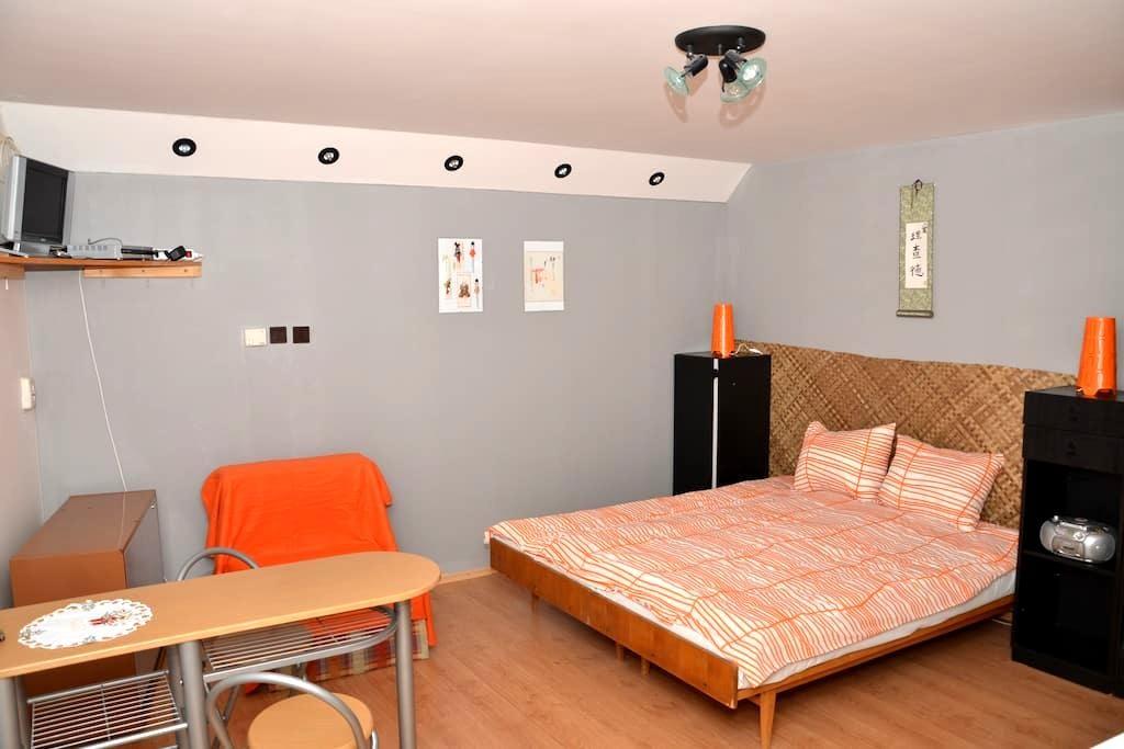 Lovely apartment in heart of Liptov - Závažná Poruba - Appartement