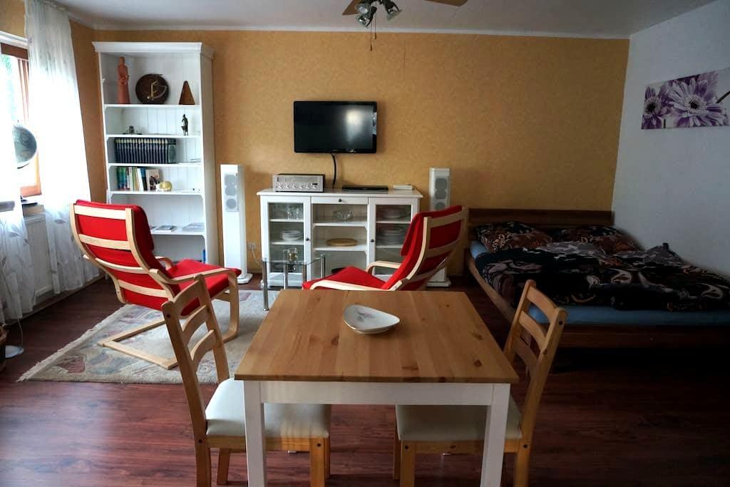1-Zimmer Apartment Bad, sep. Küche, - Au - Hus