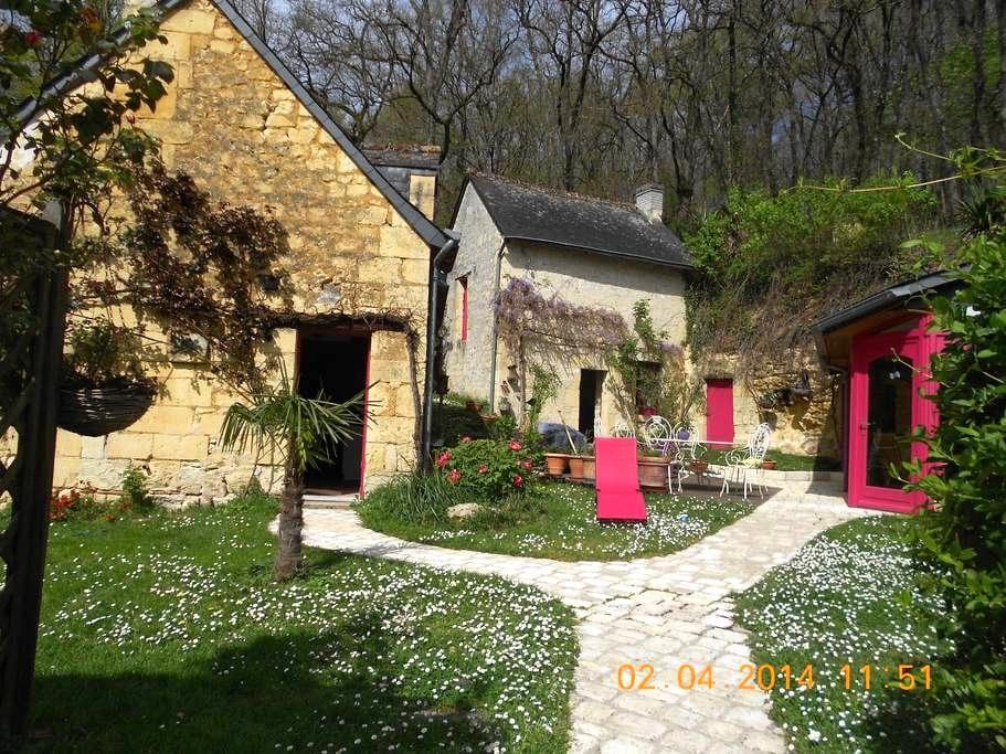 maison tourangelle,pleine de charme - La Roche-Clermault - Talo