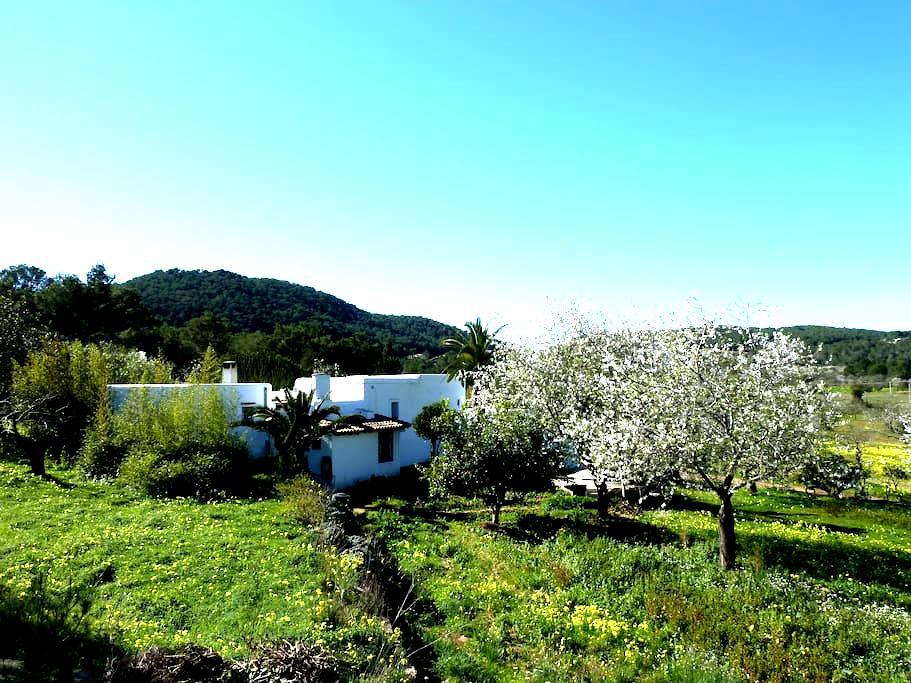 Room in a Tradicional Rural House - Santa Eulària des Riu - Dom