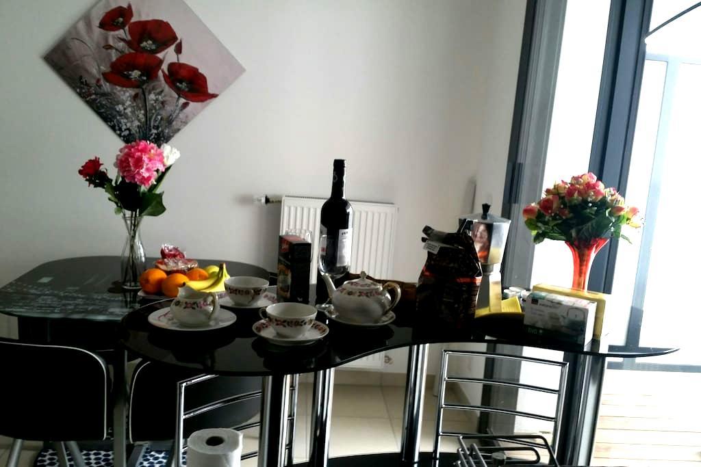Pleasant flat close Geneva palexpo - Saint-Julien-en-Genevois - Appartement