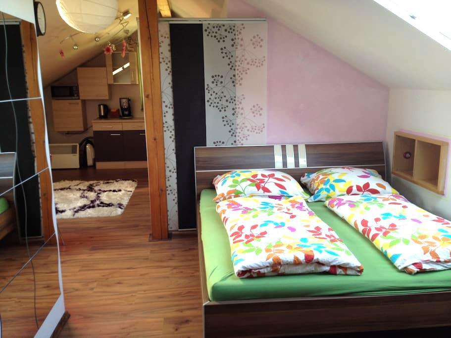Cozy room in Eugendorf - Eugendorf - Ház