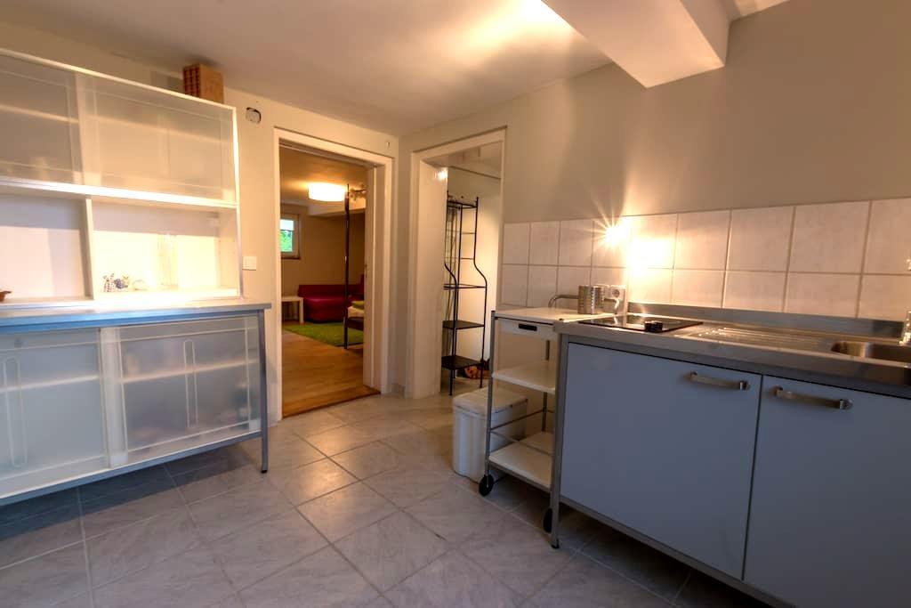 "Reduziert ( wg. Baustelle ggü.)  ""Schwalbennest"" - 呂訥堡(Lüneburg) - 公寓"