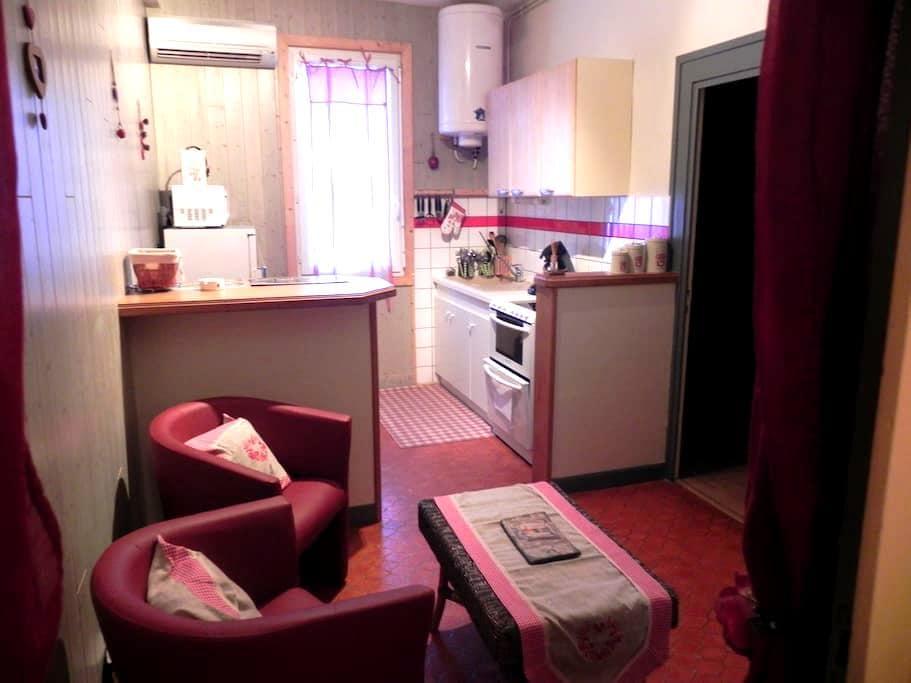 bel appartement a 5 min du centre - Le Mont-Dore - Daire