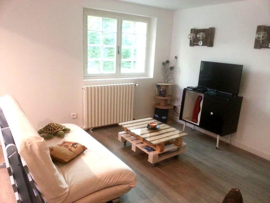 Studio 50m² indépendant ds la campagne toulousaine - Baziège - Apartamento