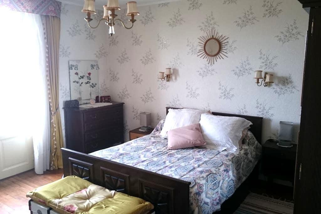 chambre avec vue sur la ville - Albi - Bed & Breakfast