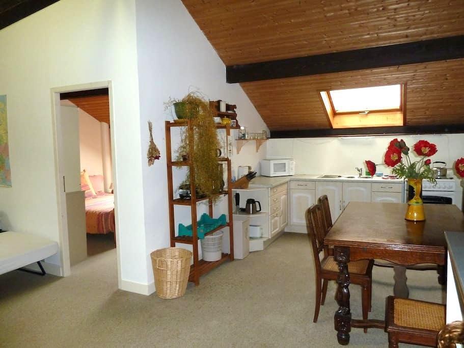 One bedroom apartment in the Savoie - Montailleur - Lägenhet
