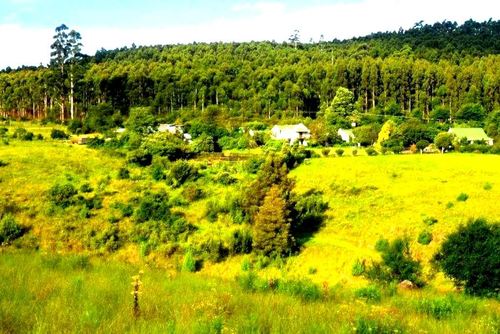 Cottage on the farm - Howick