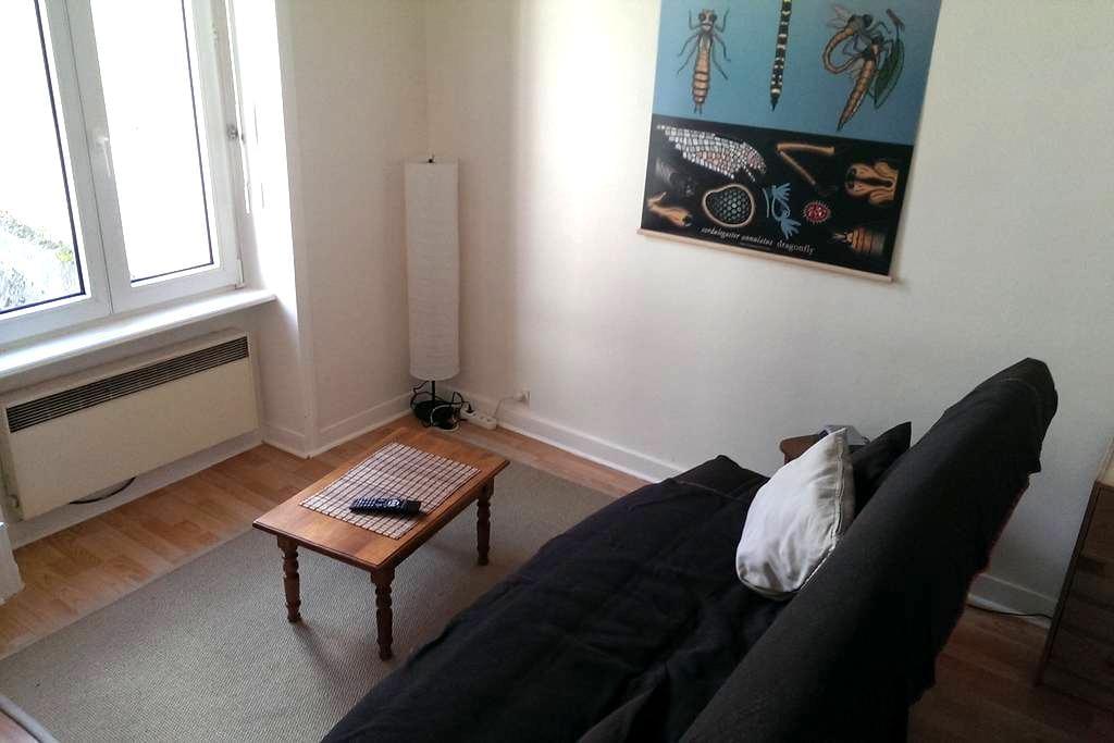 Studio 22 m2 agréable, lumineux en hyper centre - Quimper - Leilighet