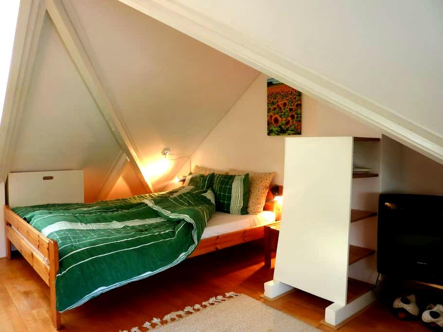 Cosy and  complete room in Peize - Peize - Rumah