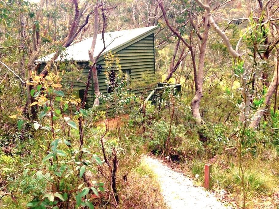 Bush Cabin Bliss! - Katoomba - Cabane