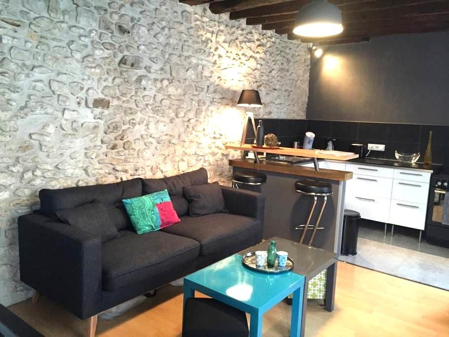 Lovely Cosy&Chic Duplex in Fonty - Fontainebleau - Lägenhet