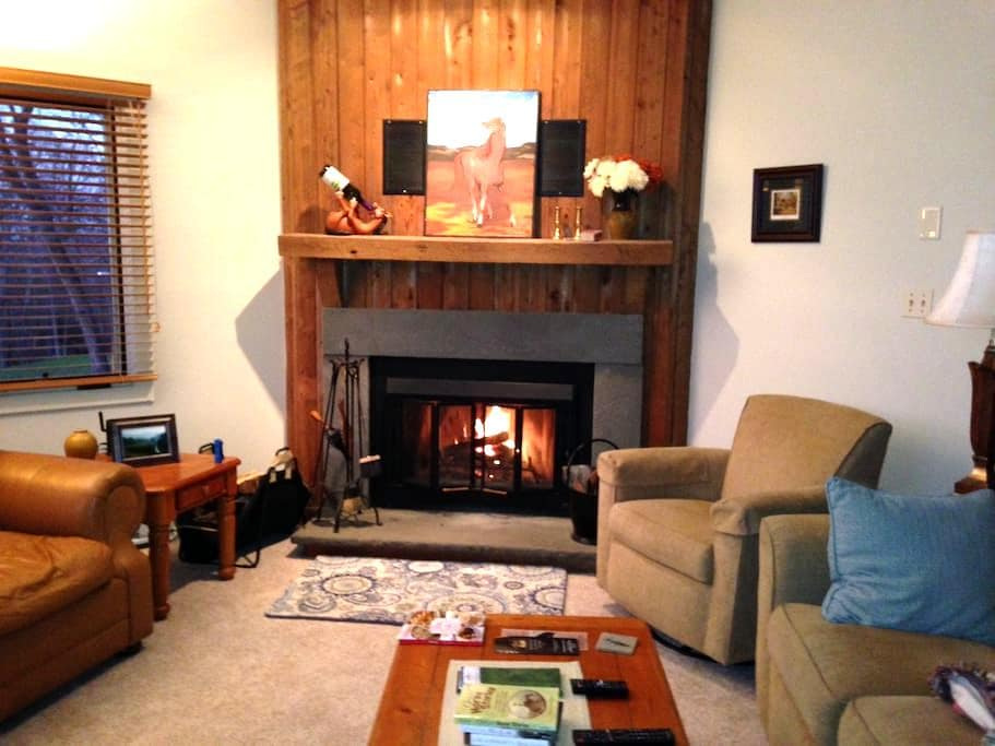 Cozy Private 2BR Walkout on 18th Tee Devils Knob - Roseland - Appartement en résidence