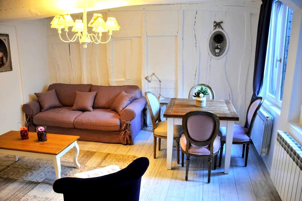 Petit Ange , charming apartment in Rouen - Rouen - Daire
