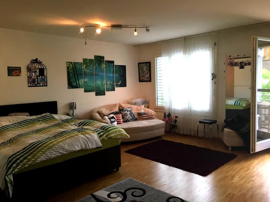 Grosse, schöne 1-Zimmer-Wohnung - Pratteln - Appartement
