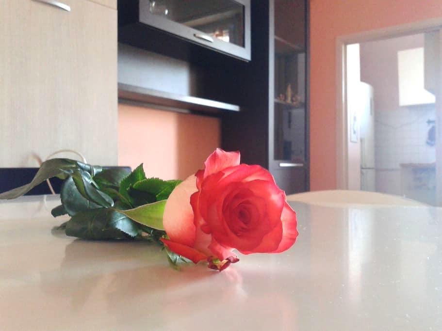Quiet and cozy appartment - Locate di Triulzi - Lejlighed