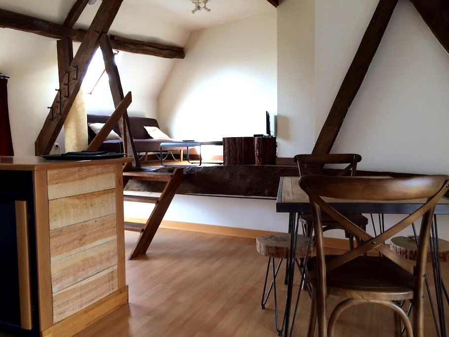 Gîte de 57m2 avec terrasse - Chinon - Huis