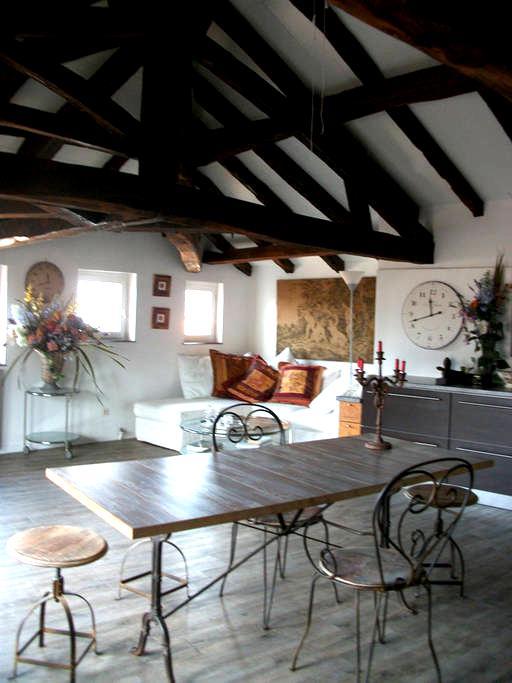 Belle chambre dans maison du XIIIe siècle - Figeac - Appartement