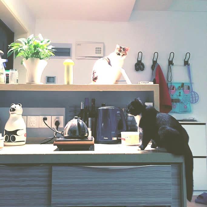 Home, sweat home~ - Chongqing - Apartamento