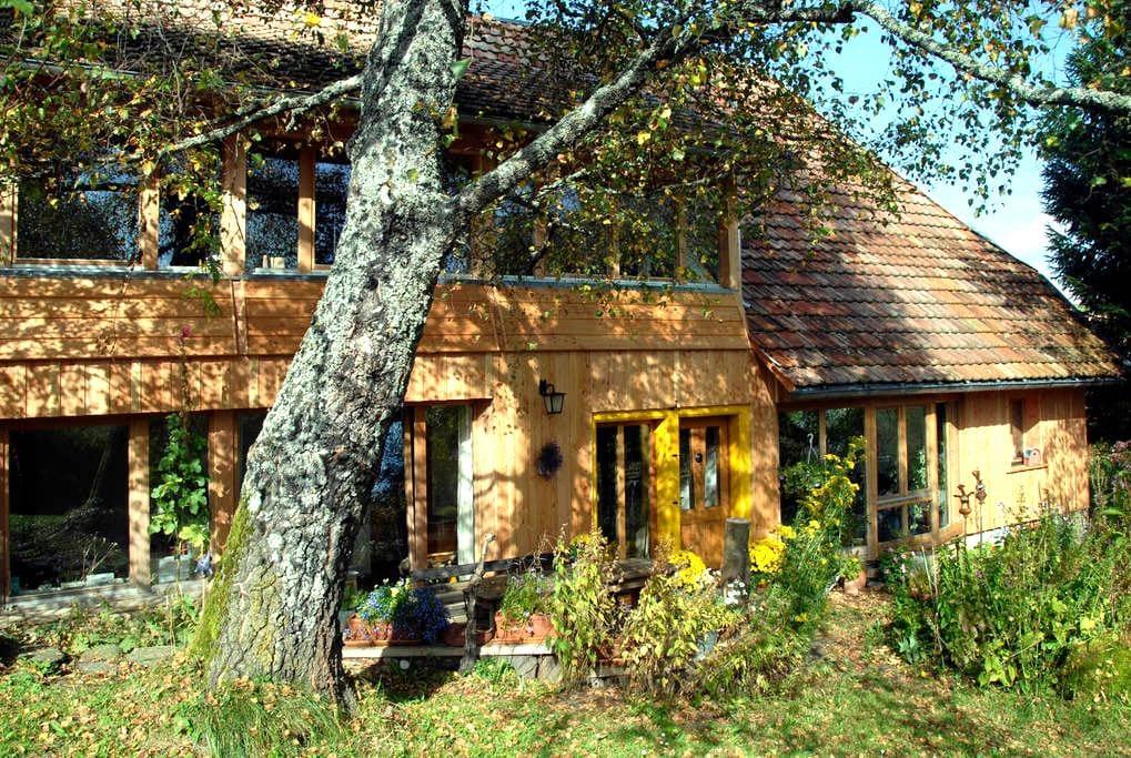 Birkensicht 1 im Schwarzwald Ferienappartement Wes - Herrischried - Apartamento