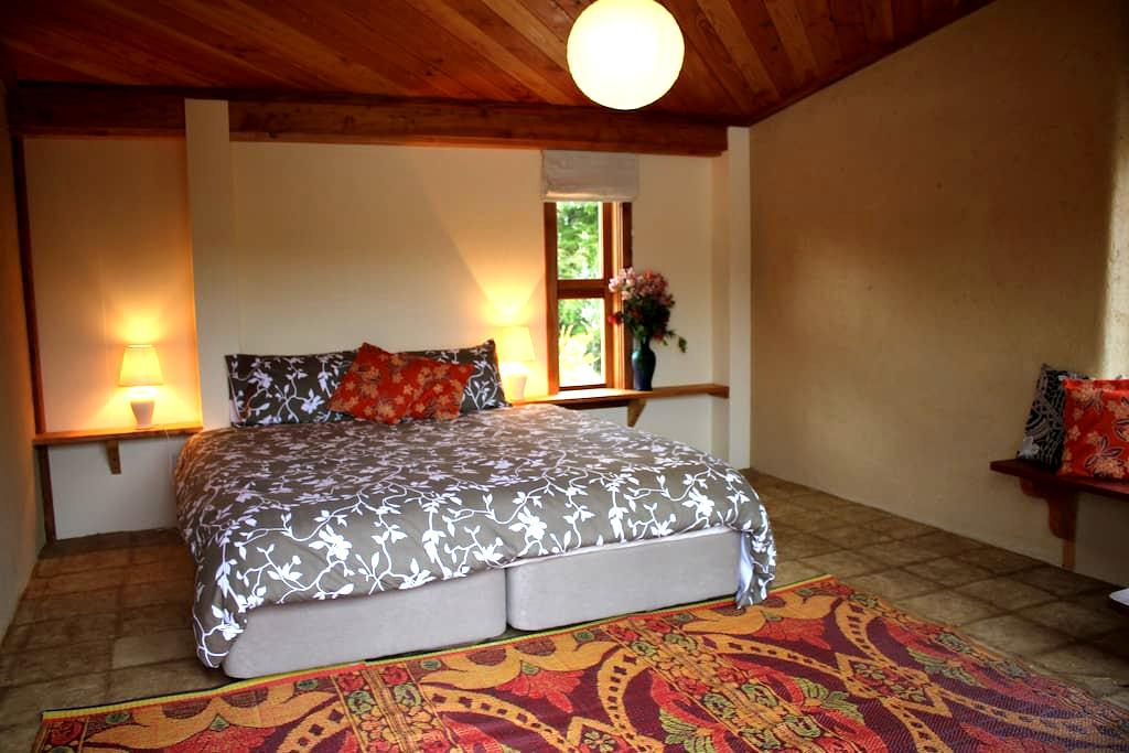 Sanctuary Springs - Pacifica room - Puramahoi - Casa cueva