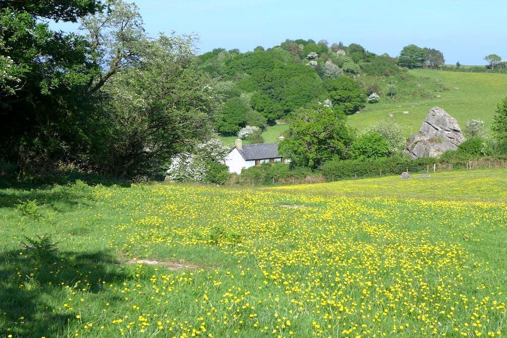 Beautiful Dartmoor Farmhouse - Moretonhampstead - Haus