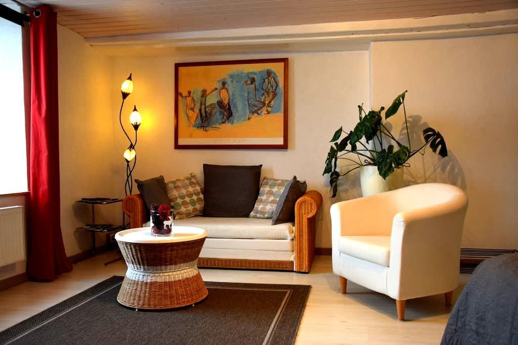 Beau et grand studio à 100m du lac de Neuchâtel - Chez-le-Bart - Departamento