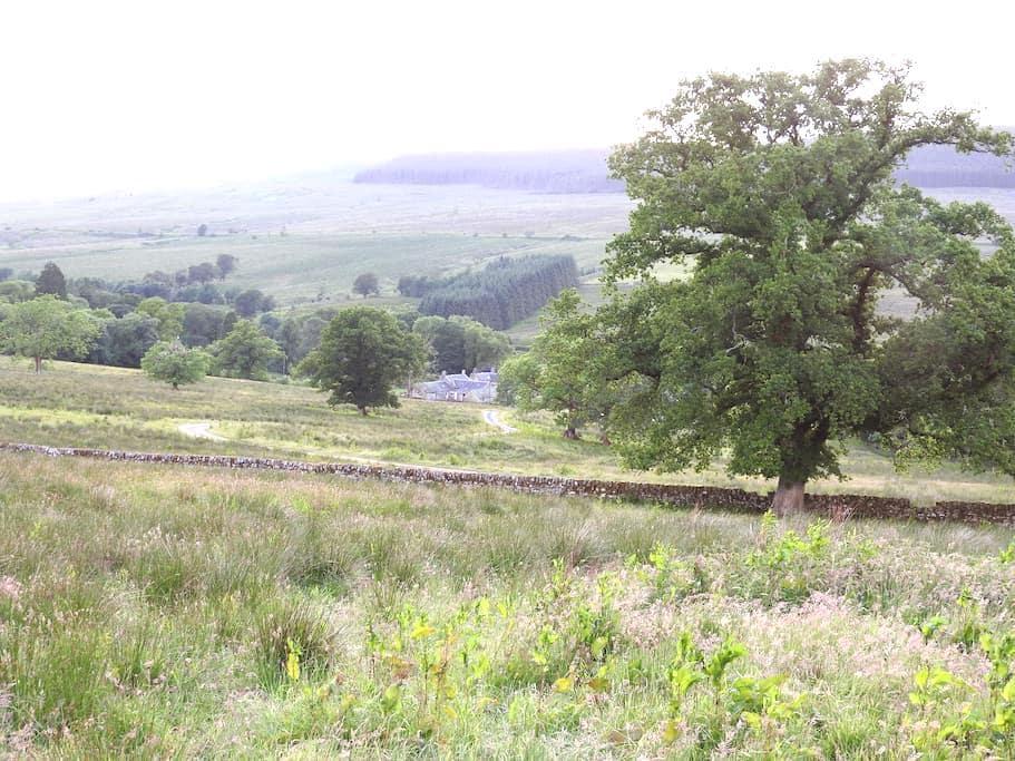 Cosy room, rural escape for Kielder,Newcastleton - Larriston - Гестхаус