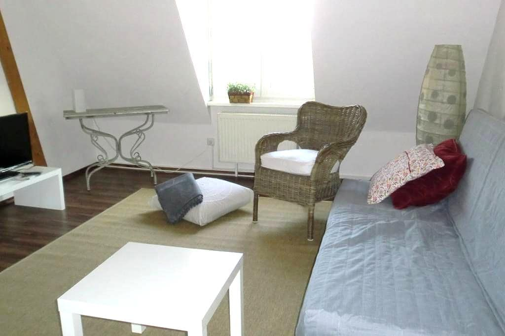 Flat in the old city. Close to SAP - Walldorf - Departamento