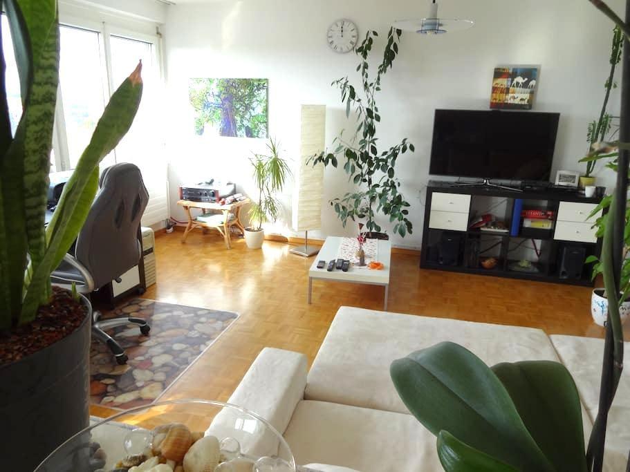 Amazing view & rent a car - Fribourg - Lägenhet