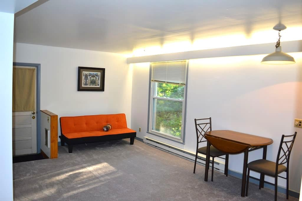 Private Apartment with Wooded Backyard - Ithaca - Apartemen