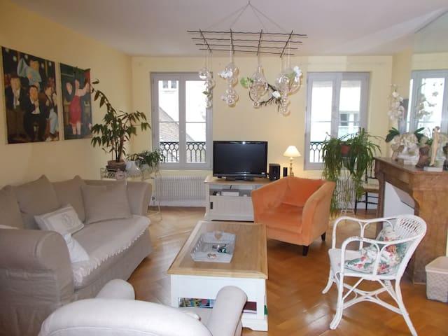 appartement centre quartier historique avec garage - Dole - Appartement