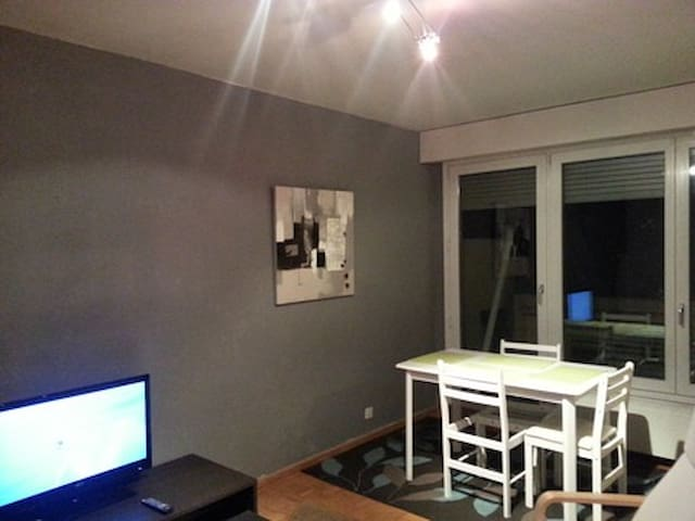 Lovely furnished studio in Geneva - Thônex - Pis