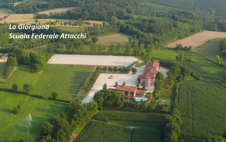 Agriturismo Corte Giorgiana - Monzambano - Bed & Breakfast