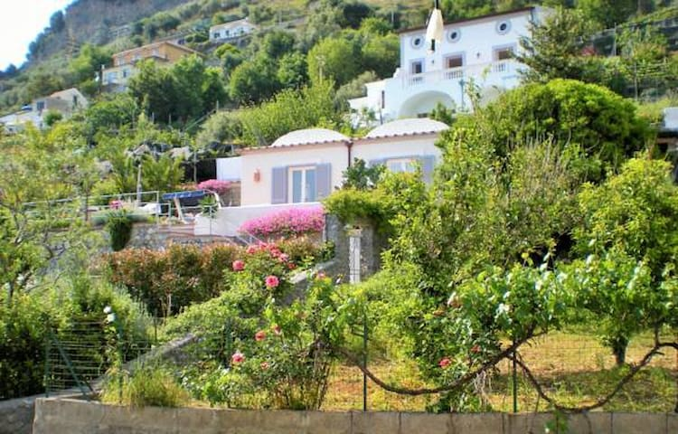 Garden Villa - be at the heart of the Amalfi Coast - Conca dei Marini - Hus