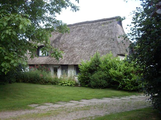 Im Paradies - Pronstorf - Maison