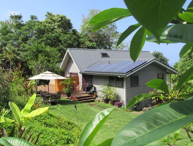Hale Walua - Artist's Ohana - Kailua-Kona - Huis